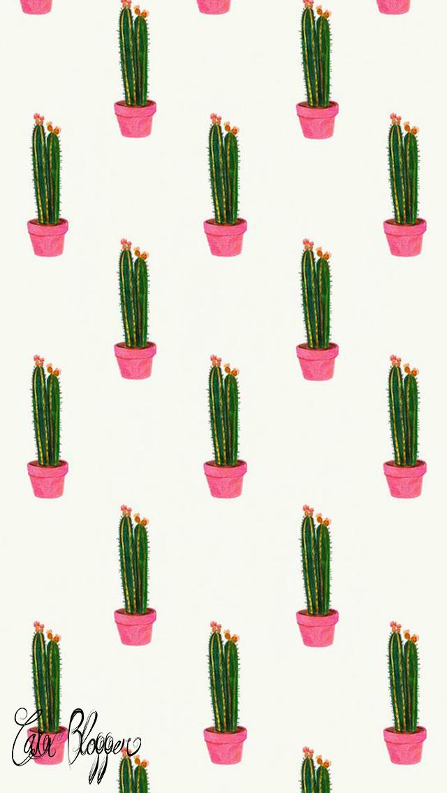 Sfondo Per Iphone 5 Cactus Consigli Per Blogger Su Social Media