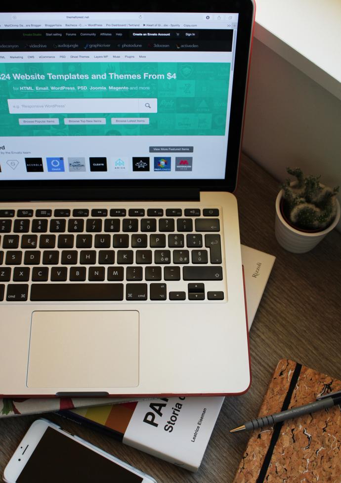 5-consigli-per-scegliere-il-giusto-Tema-WordPress-per-il-tuo-Blog-b