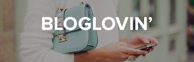 come-ottenere-più-follower-su-bloglovin-tips
