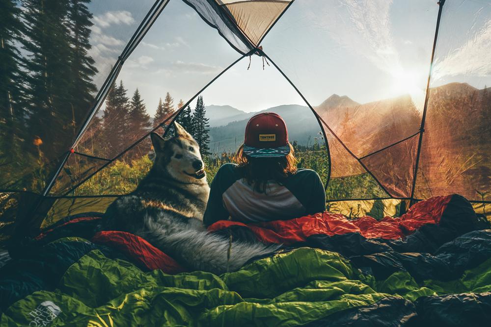 Blog-di-viaggi-e-avvantura-cane